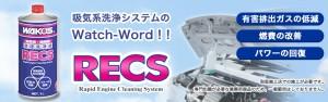 RECS-TOP-20141111